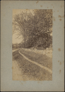 Old Sudbury Road with footpath and stone wall