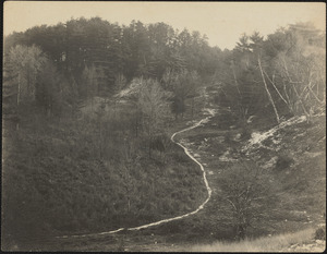 """A section of the prehistoric Indian trail called the """"Old Bay Path"""" from Boston to the west"""