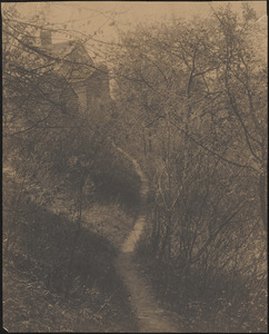 Footpath from the train tracks near Mill Pond to Noyes-Morse house