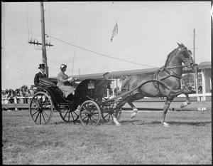 Oxford Leopard owned by Emile Philip [Schnider], heavy harness horse was 1st in class & at Brockton Fair