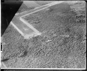 Aerial view of Ruth Nichol's wreck.