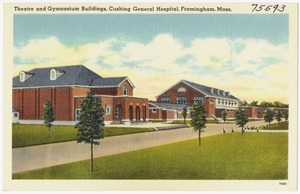 Theatre and gymnasium buildings, Cushing General Hospital, Framingham, Mass.