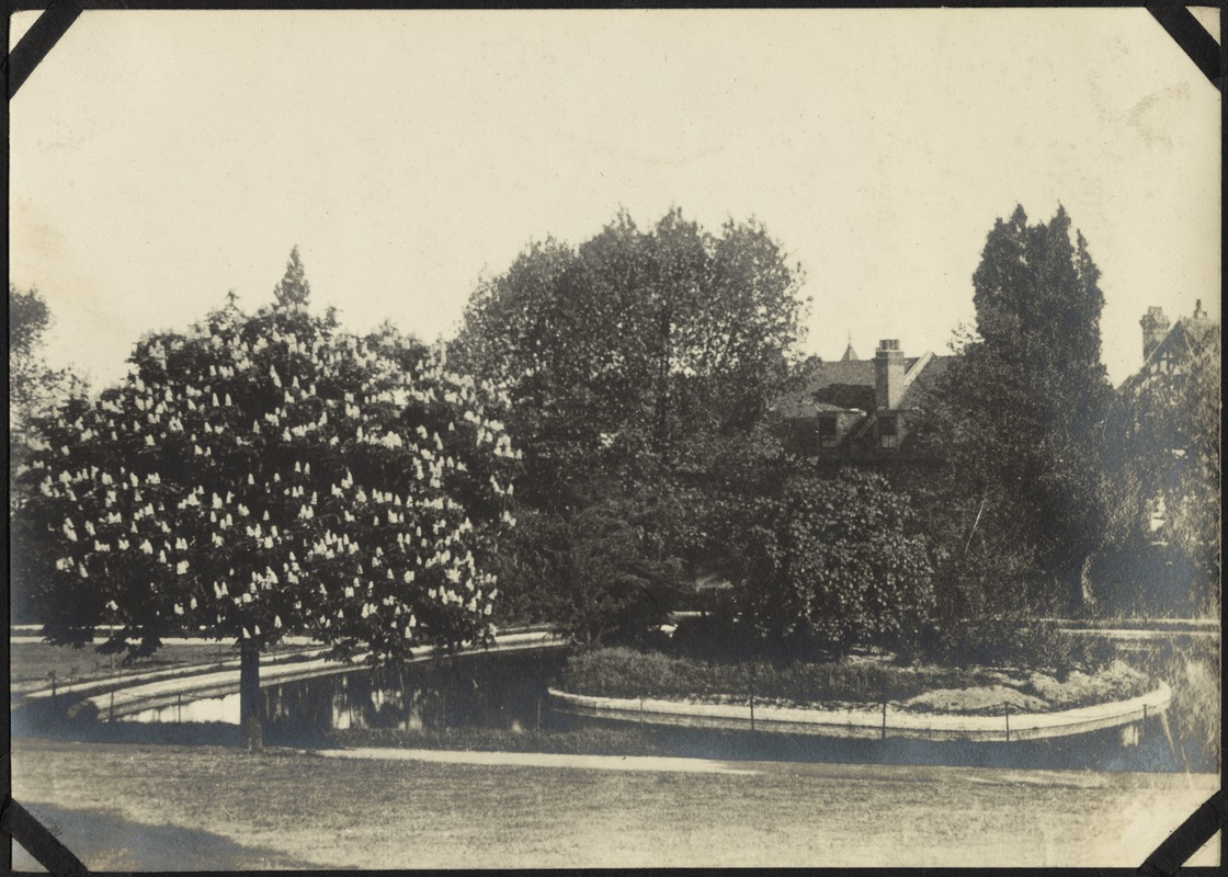 Gardens near Boys' Primary School, The Royal Normal College for the Blind, England