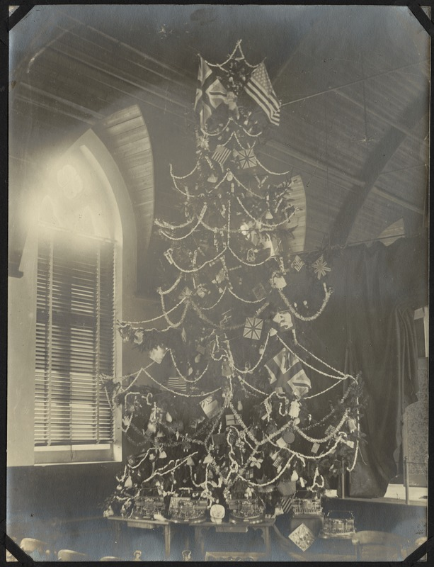 Christmas Tree, The Royal Normal College for the Blind, England