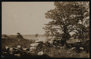 View of Palmer's Island from Fort Phoenix