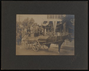 Decorated Horse and Carriage