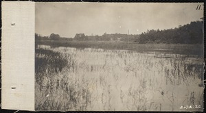 Distribution Department, Low Service Spot Pond Reservoir, Basket Cove / Morning Meadow (Kingfisher Hill and Basket Cove), Stoneham, Mass., Jul. 1898