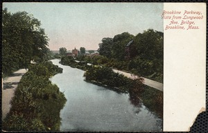 Brookline Parkway, vista from Longwood Ave. Bridge, Brookline, Mass.