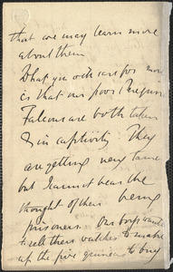 Emily Tennyson autograph letter signed (incomplete) to Mrs. Gatty