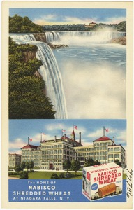 The home of Nabisco Shredded Wheat at Niagara Falls, N. Y.