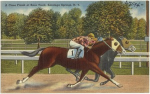 A close finish at race track, Saratoga Springs, N. Y.