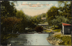 Duck Pond and Deer Pasture, Forest Park, Springfield, Mass.