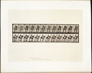 Animal locomotion. Plate 578