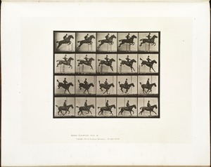 Eadweard Muybridge's Animal Locomotion