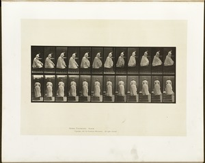 Animal locomotion. Plate 95