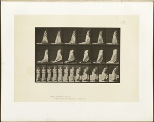 Animal locomotion. Plate 100