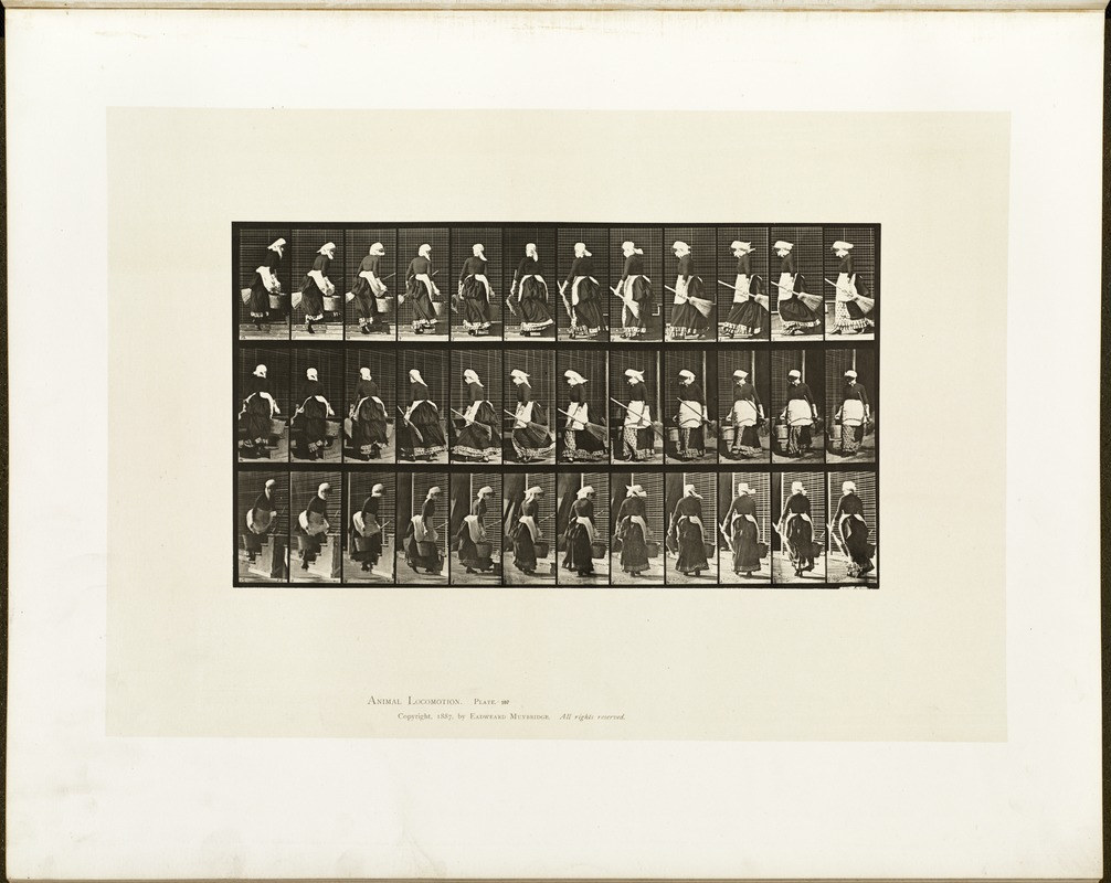 Animal locomotion. Plate 107