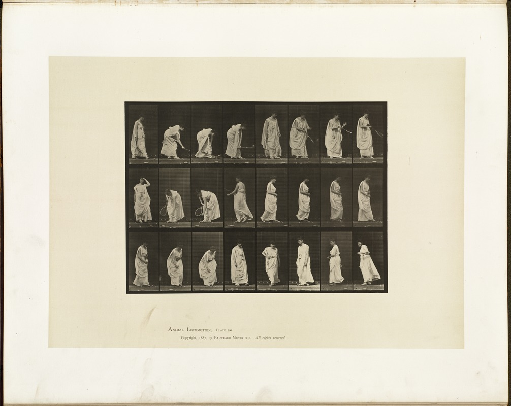 Animal locomotion. Plate 299