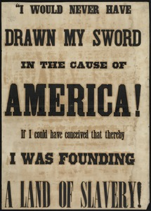 """I would never have drawn my sword in the cause of America if I could have conceived that thereby I was founding a land of slavery!"""