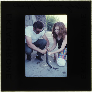 Young lady and man with shad