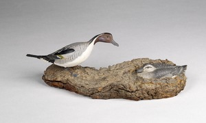 Pintail ducks (pair)