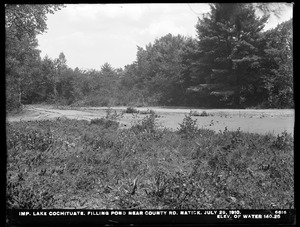 Sudbury Department, improvement of Lake Cochituate, filling pond near county road, elevation of water 140.25, Natick, Mass., Jul. 29, 1910
