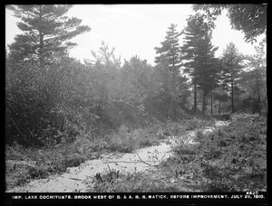 Sudbury Department, improvement of Lake Cochituate, brook west of Boston & Albany Railroad, before improvement, Natick, Mass., Jul. 29, 1910
