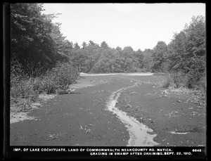 Sudbury Department, improvement of Lake Cochituate, land of Commonwealth near county road, grading in swamp after draining, Natick, Mass., Sep. 22, 1910
