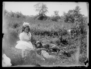 Little girl, dog, & puppies in a field