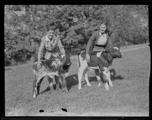 Girls with calves, Massachusetts Agricultural College