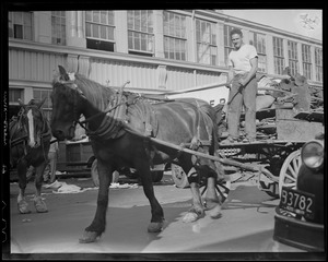 "Horse & driver ""junk"" on wagon"