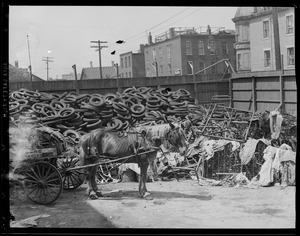 Horse drawn P.W.D. cart at Junk yard in the South End