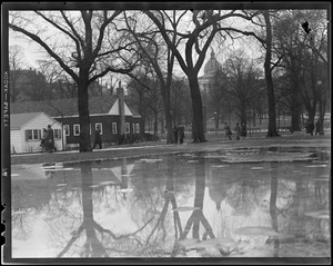 Thaw in Boston Common