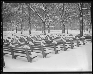 Benches on Common covered in snow