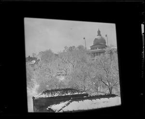 State House and Common in the snow, through window