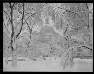 State House framed by snowy trees
