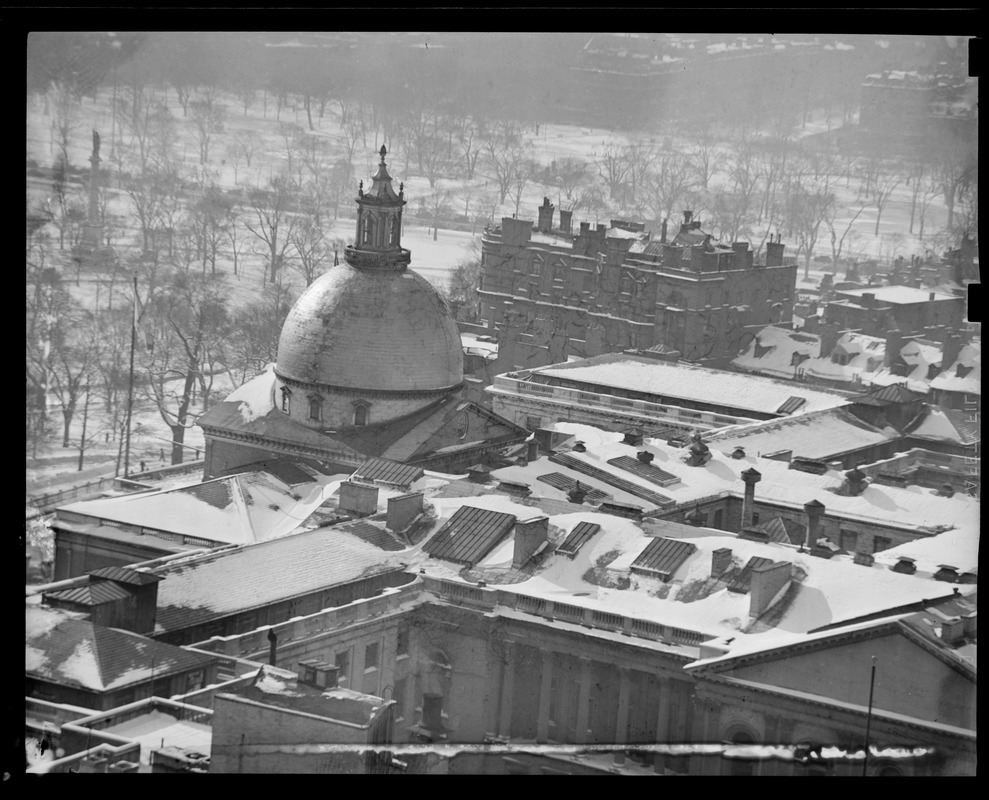 State House roof in the snow