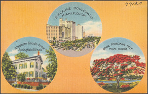 Biscayne Boulevard, Miami, Florida. Abraham Lincoln home, Springfield, Illinois. Royal Poinciana tree, Miami, Florida