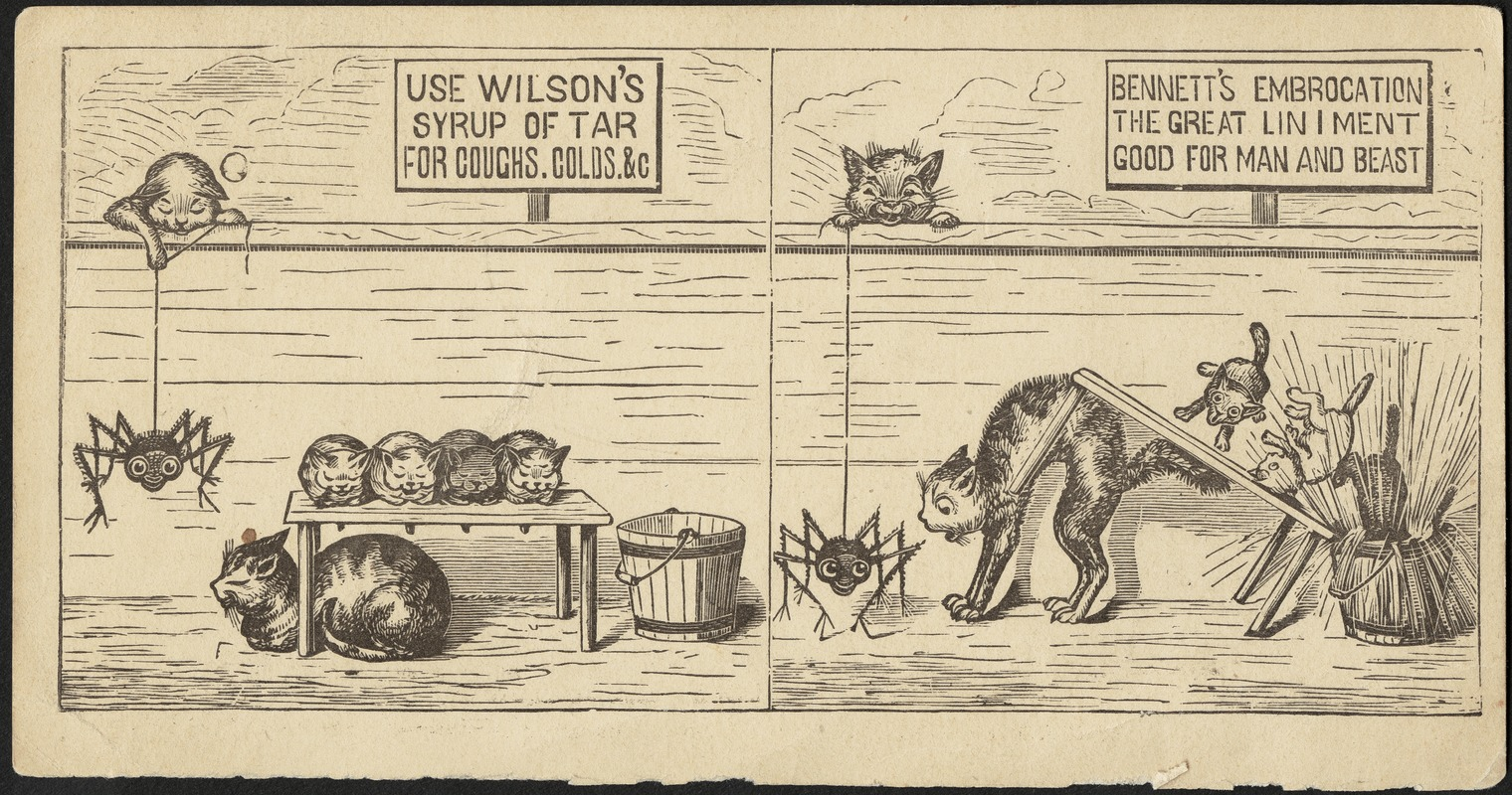Use Wilson's Syrup of Tar for coughs, colds &c. Bennett's Embrocation the great liniment good for man and beast