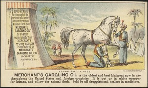 Merchant's Gargling Oil is the oldest and best liniment now in use throughout the United States and foreign countries. It is put up in white wrapper for human, and yellow for animal flesh.