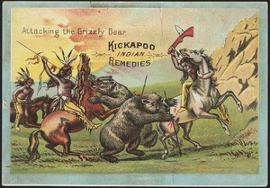 Attacking the grizzly bear - Kickapoo Indian Remedies