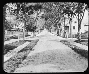 Commandant's avenue in the Boston Naval Shipyard