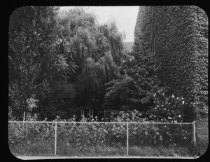 Forest Garden from avenue 1960