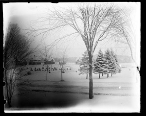 Boyden Park in winter snow