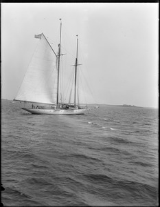 Yacht, Hull Bay