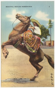 Beautiful Mexican horsewoman