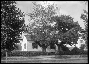 House and crooked maples - Williams Street