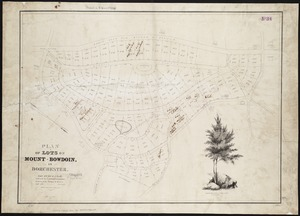 Plan of lots on Mount-Bowdoin in Dorchester