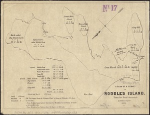 A plan of a survey of Noddles Island