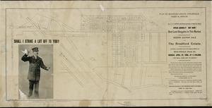Plan of Bradford Estate, Roslindale, Ward 23, Boston